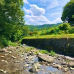 行ってみよう『リハビリ×散歩』小平の里に行こう!|リハ散歩【Vol.5】
