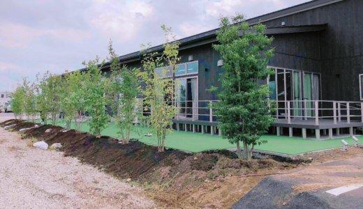 ココロデイサービスまえばし💛庭木が植わりました!