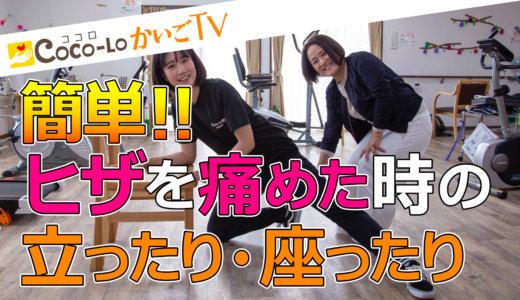 【ココロかいごTV】Youtubeはじめました✨